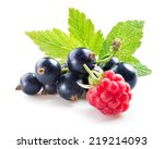Berries. Black Currant With...