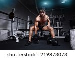 athlete in the gym training... | Shutterstock . vector #219873073