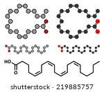 arachidonic acid molecule....   Shutterstock .eps vector #219885757