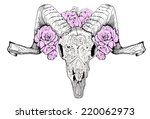 vector skull sheep lamb  horns  ... | Shutterstock .eps vector #220062973