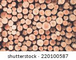a pile of cut wood stump log... | Shutterstock . vector #220100587