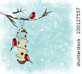 Winter Card With Bird And Bird...