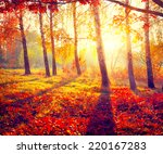 autumn. fall. autumnal park.... | Shutterstock . vector #220167283