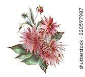 dahlias bouquet | Shutterstock . vector #220597987