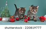 christmas group portrait of... | Shutterstock . vector #220819777