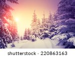 fantastic landscape glowing by... | Shutterstock . vector #220863163
