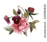 bouquet of peonies and pansy ... | Shutterstock . vector #220982833