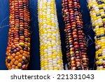 Multi Colored Indian Corn Made...