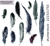set of plumes  watercolor... | Shutterstock .eps vector #221521753