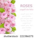 roses flowers background... | Shutterstock . vector #221586373