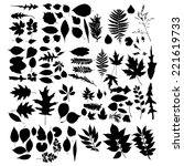 Leaf Collection   Vector...