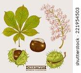 Blossom Chestnut Botanical...