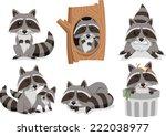 Raccoon Raccoons Set  With...