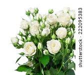 Stock photo white roses 222095383