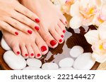 closeup photo of a beautiful... | Shutterstock . vector #222144427