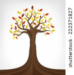 colorful autumn ash tree...