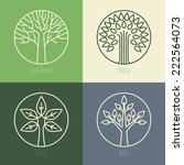vector organic badges   outline ... | Shutterstock .eps vector #222564073