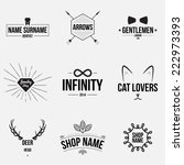 set of retro vintage badges and ... | Shutterstock .eps vector #222973393