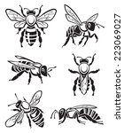 monochrome design of six bees | Shutterstock .eps vector #223069027