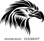 black and white eagle head | Shutterstock .eps vector #223288207