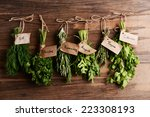 different fresh herbs on wooden ... | Shutterstock . vector #223308193