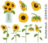 sunflowers set | Shutterstock .eps vector #223445113