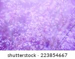 Purple Background With Small...