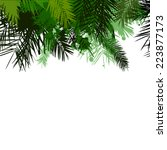 palm leaves hanging from up.... | Shutterstock .eps vector #223877173