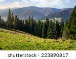 Hillside Of Mountain Range Wit...