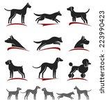 Stock vector dogs set vector 223990423
