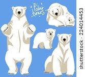 polar bears collection.  | Shutterstock .eps vector #224014453