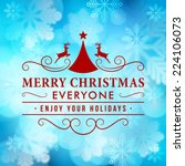 merry christmas message and... | Shutterstock .eps vector #224106073