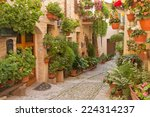 Street Decorated With Plants...