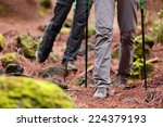 Hiking   Hikers Walking In...