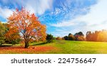 Autumn  Fall Landscape With A...