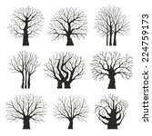 collection of trees silhouettes | Shutterstock .eps vector #224759173