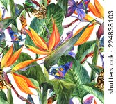 tropical seamless pattern with... | Shutterstock . vector #224838103