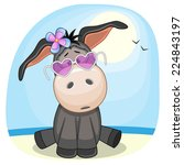 Cute Donkey Girl In Sunglasses...
