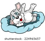 dog puppy lying in bed  ... | Shutterstock .eps vector #224965657