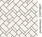 seamless pattern. diagonal grid ... | Shutterstock .eps vector #224978827