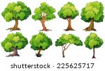 illustration of a set of trees | Shutterstock .eps vector #225625717