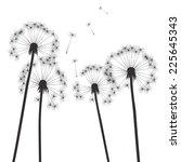 black vector dandelions and... | Shutterstock .eps vector #225645343