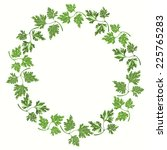round frame with parsley on... | Shutterstock .eps vector #225765283