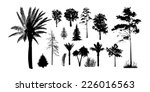 Set Of Silhouettes Of Trees On...