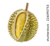 Durian Fruit Isolated On White...