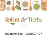 spices and herbs on white... | Shutterstock . vector #226517407