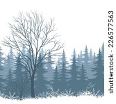 winter woodland landscape with... | Shutterstock .eps vector #226577563