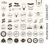 collection of badges and labels | Shutterstock .eps vector #226614427