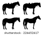 horse stands under the saddle... | Shutterstock .eps vector #226652617