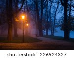 vintage lamp in the city park... | Shutterstock . vector #226924327